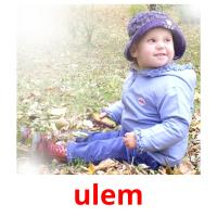 ulem picture flashcards