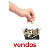 vendos picture flashcards
