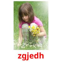 zgjedh picture flashcards