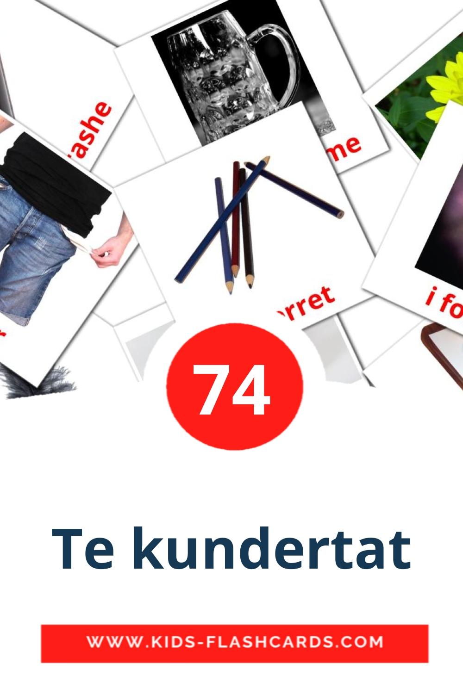 74 Te kundertat Picture Cards for Kindergarden in albanian