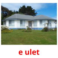 e ulet picture flashcards