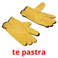 te pastra picture flashcards