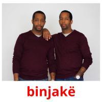 binjakë picture flashcards