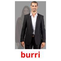 burri picture flashcards