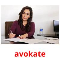avokate picture flashcards