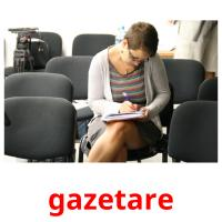 gazetare picture flashcards