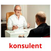 konsulent picture flashcards