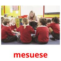 mesuese picture flashcards