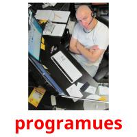 programues picture flashcards
