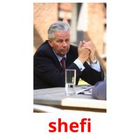 shefi picture flashcards