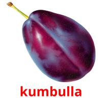 kumbulla picture flashcards