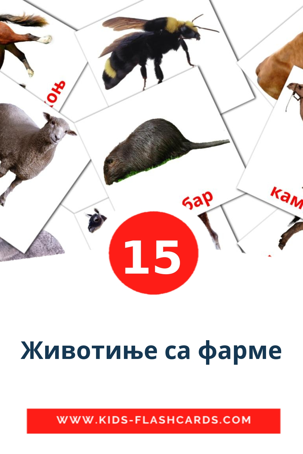 15 Животиње са фарме Picture Cards for Kindergarden in serbian(cyrillic)