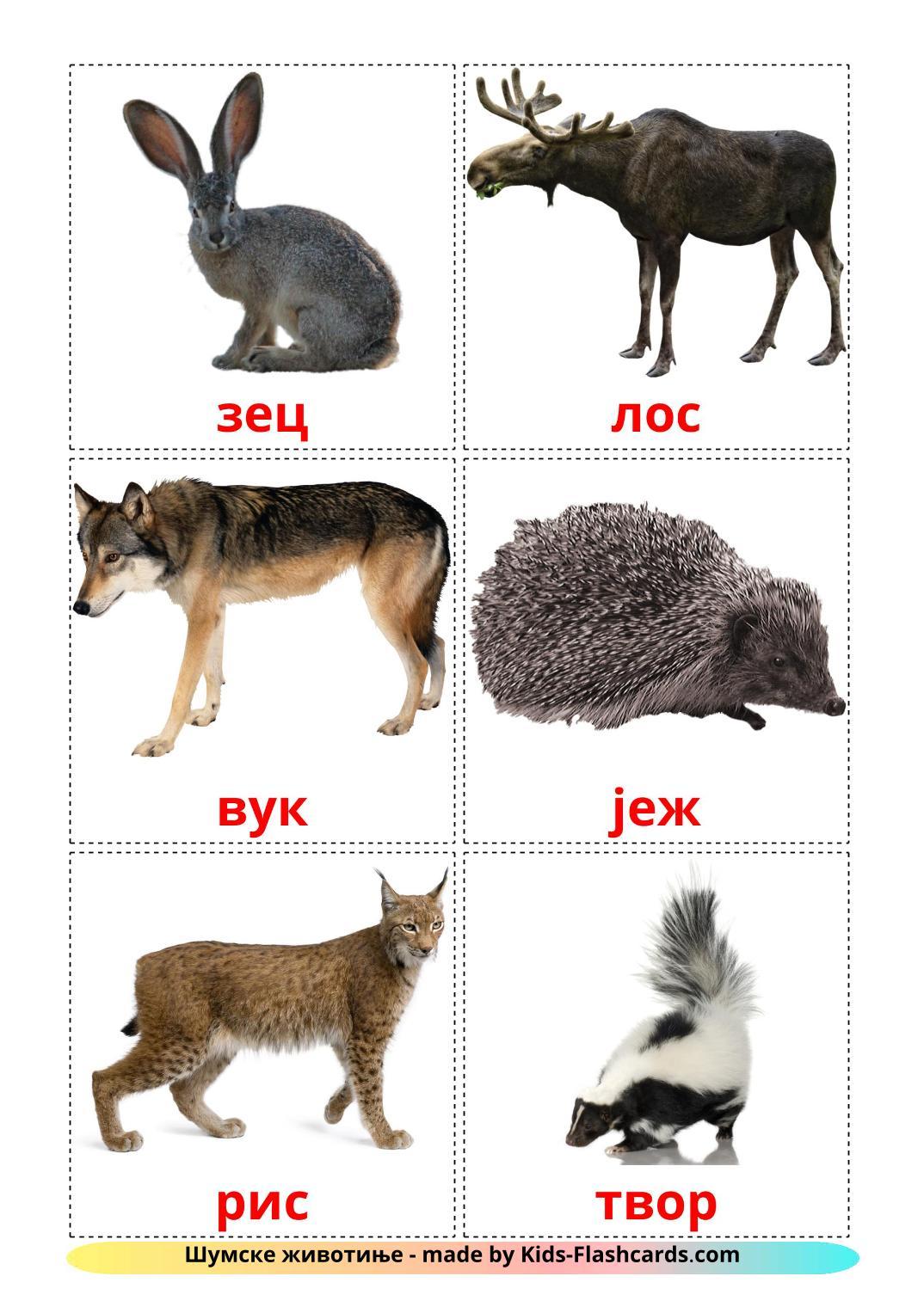 Forest animals - 22 Free Printable serbian(cyrillic) Flashcards