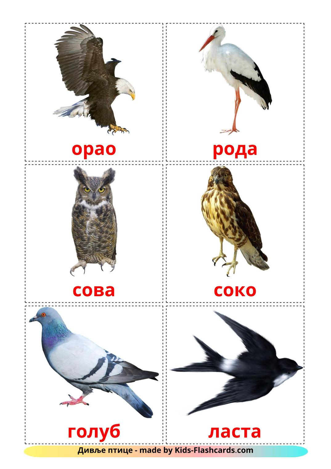 Wild birds - 18 Free Printable serbian(cyrillic) Flashcards