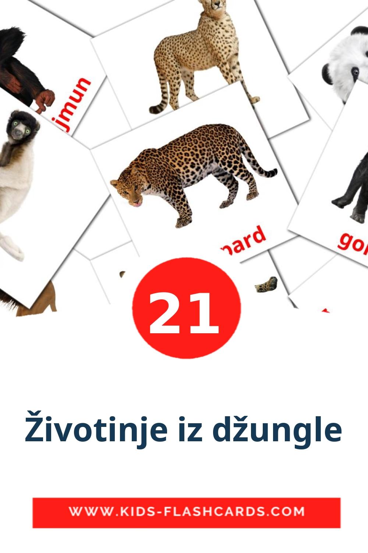 21 Životinje iz džungle Picture Cards for Kindergarden in serbian