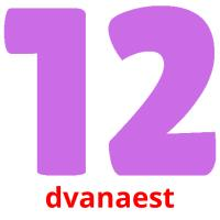 dvanaest picture flashcards