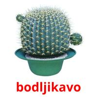 bodljikavo picture flashcards