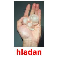 hladan picture flashcards