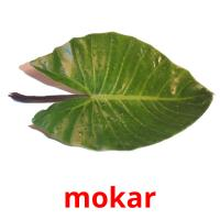 mokar picture flashcards