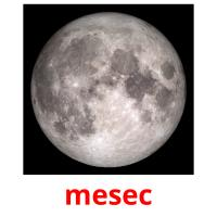 mesec picture flashcards