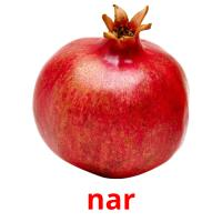 nar picture flashcards