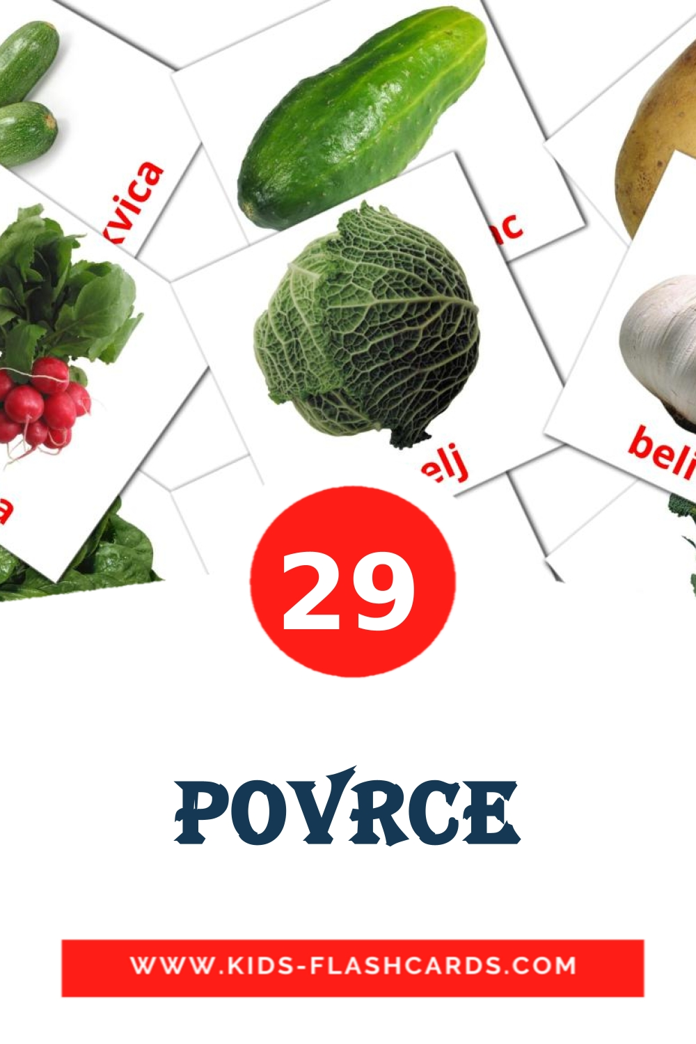 29 Povrce Picture Cards for Kindergarden in serbian