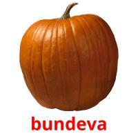 bundeva picture flashcards
