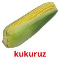 kukuruz picture flashcards