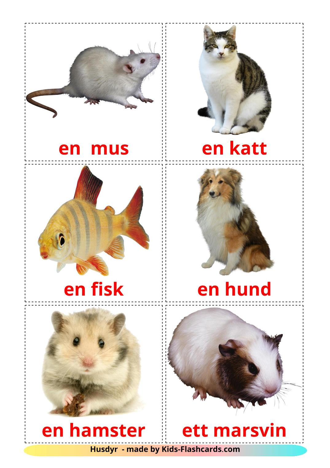 Domestic animals - 10 Free Printable swedish Flashcards