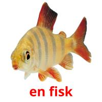 en fisk picture flashcards