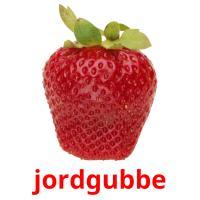 jordgubbe picture flashcards