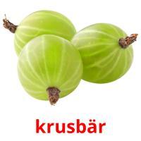krusbär picture flashcards