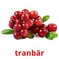 tranbär picture flashcards