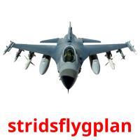 stridsflygplan picture flashcards