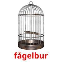 fågelbur picture flashcards