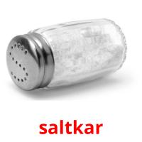 saltkar picture flashcards