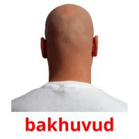 bakhuvud picture flashcards
