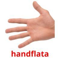 handflata picture flashcards