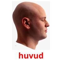 huvud picture flashcards