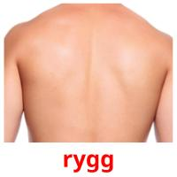 rygg picture flashcards