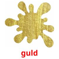 guld picture flashcards