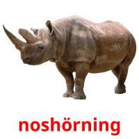 noshörning picture flashcards