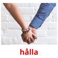 hålla picture flashcards