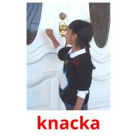 knacka picture flashcards