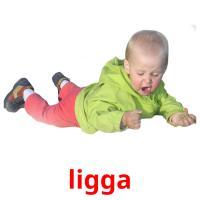 ligga picture flashcards