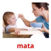 mata picture flashcards
