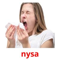 nysa picture flashcards