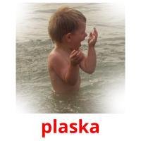 plaska picture flashcards