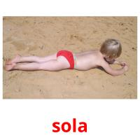 sola picture flashcards