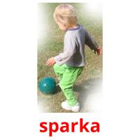 sparka picture flashcards